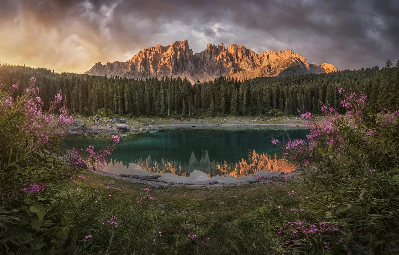 Photo wallpaper landscape, mountains, nature, lake, Italy, grass, forest, meadows, Ivan-tea, The Dolomites, Carezza