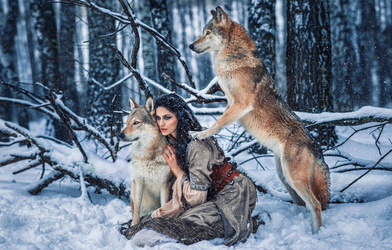 Photo wallpaper winter, forest, girl, snow, pose, dress, brunette, wolves, Алёна Беляева, by Александра Савенкова