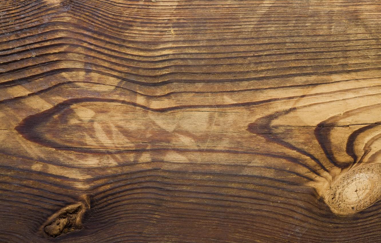 Photo wallpaper colors, wood, streaks