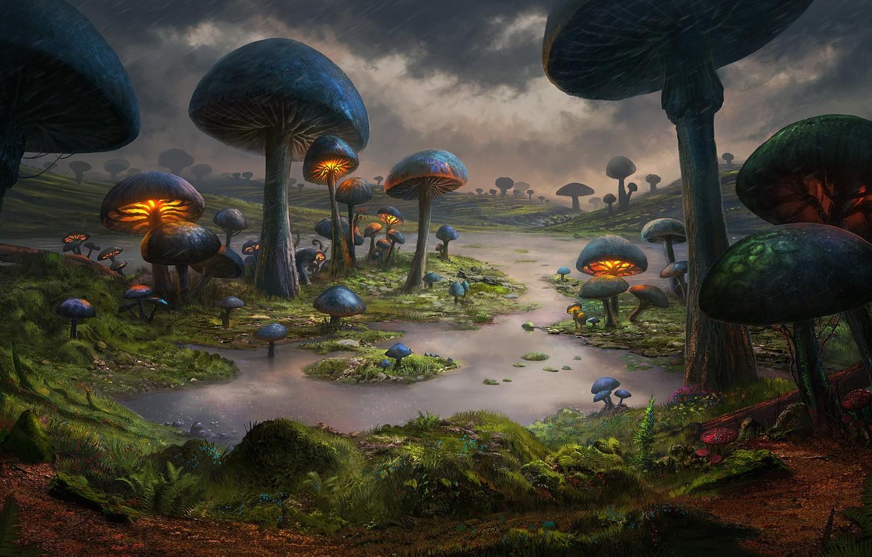 Photo wallpaper Nature, Figure, Mushrooms, The world, World, Fantasy, Art, Art, Fiction, Environments, Dominique van Velsen, by …