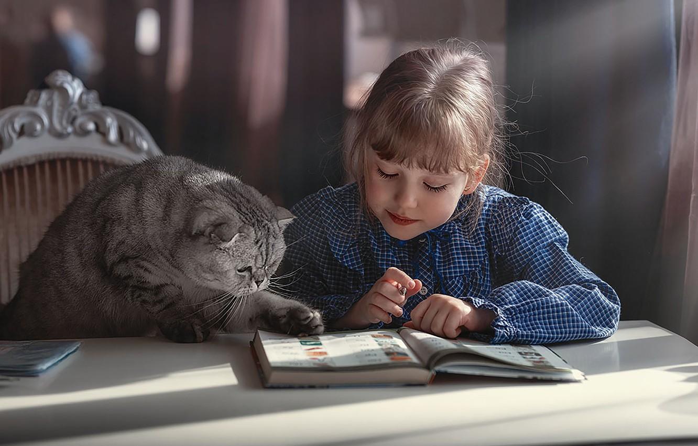 Photo wallpaper cat, the situation, Girl, homework, photographer Marina Linchuk