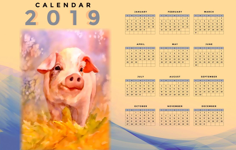 Photo wallpaper pig, pig, calendar for 2019