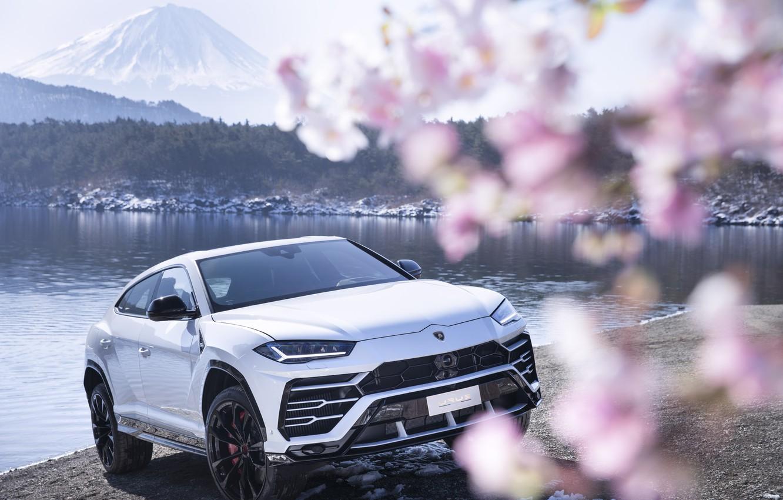 Photo wallpaper mountain, Lamborghini, Japan, Sakura, 2018, crossover, Fuji, Urus