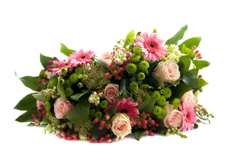 Photo wallpaper flowers, bouquet, white background