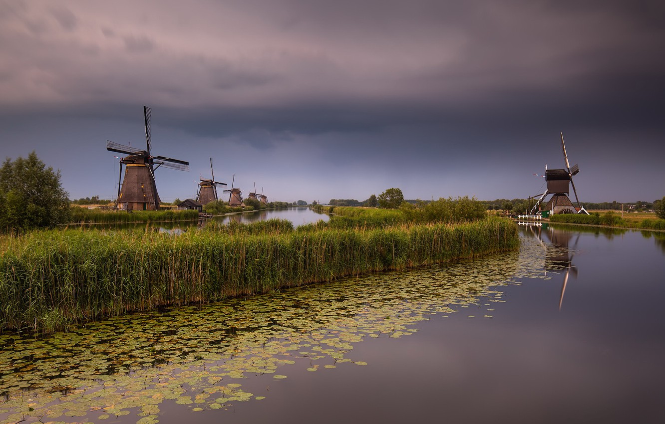 Photo wallpaper Holland, Windmill, South Holland, Elshout