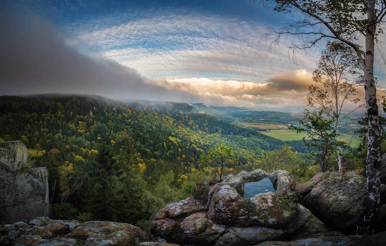 Photo wallpaper forest, the sky, landscape, nature, beauty, cloud