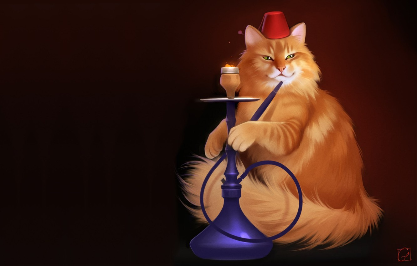 Photo wallpaper cat, hookah, pussy, art, FEZ, Alexander Khitrov, GaudiBuendia