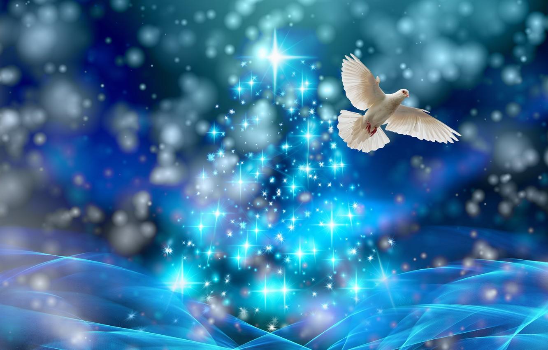 Photo wallpaper dove, spruce, Christmas, stars