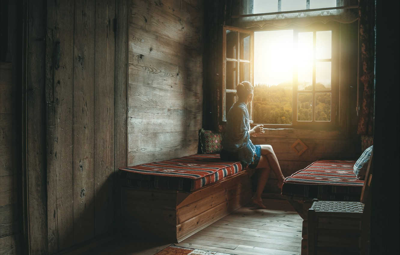 Photo wallpaper forest, girl, the sun, bench, house
