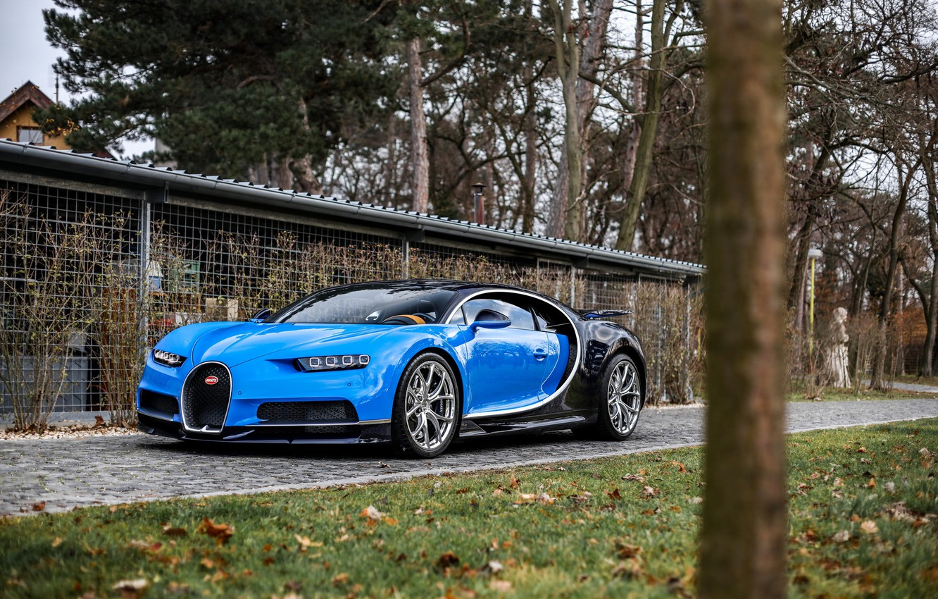 Photo wallpaper bugatti, Trees, chiron