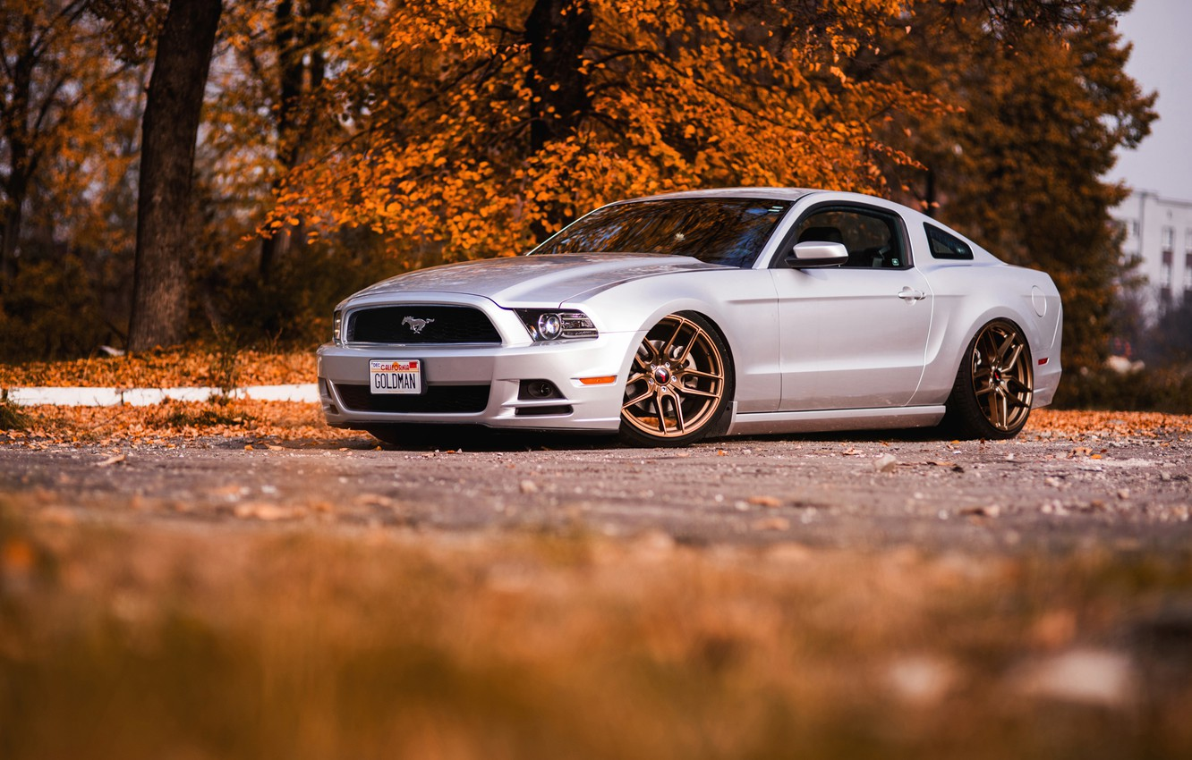 Photo wallpaper Mustang, Ford, autumn, Gold