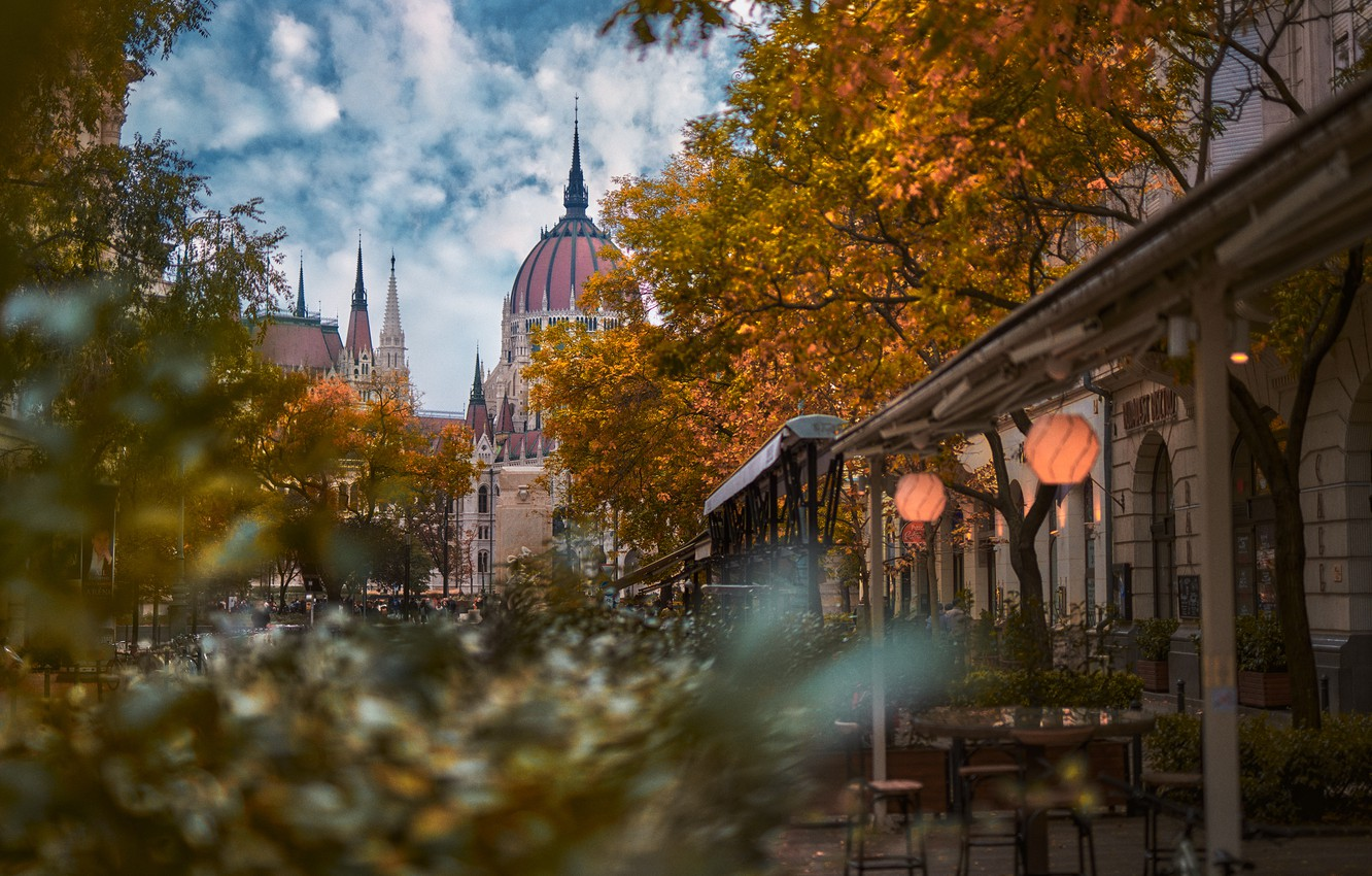 Photo wallpaper autumn, trees, the city, street, building, home, Parliament, tower, the dome, Hungary, Budapest