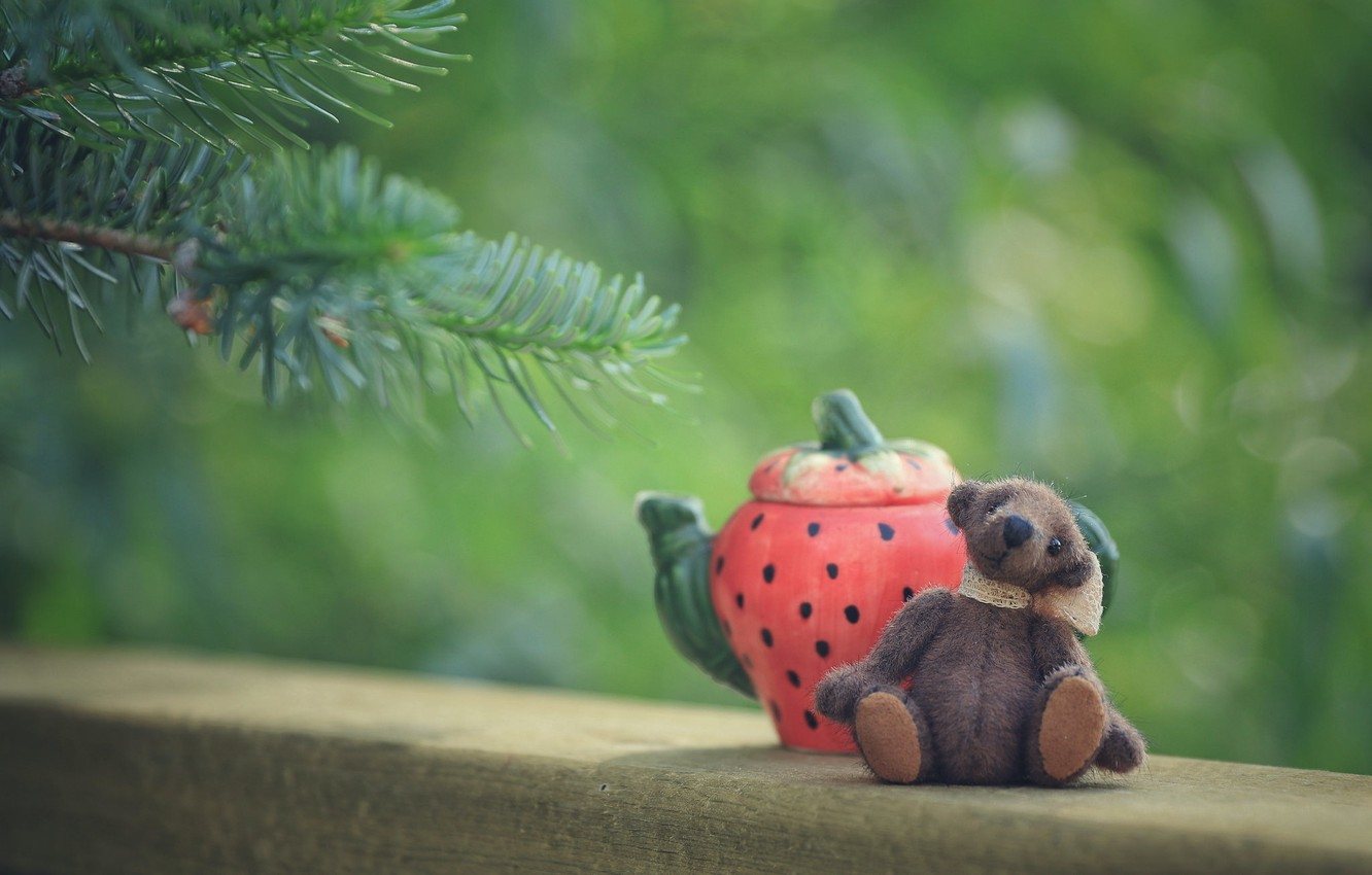 Photo wallpaper branches, childhood, green, background, mood, tea, toy, kettle, bear, bear, the tea party, bear, sitting, …