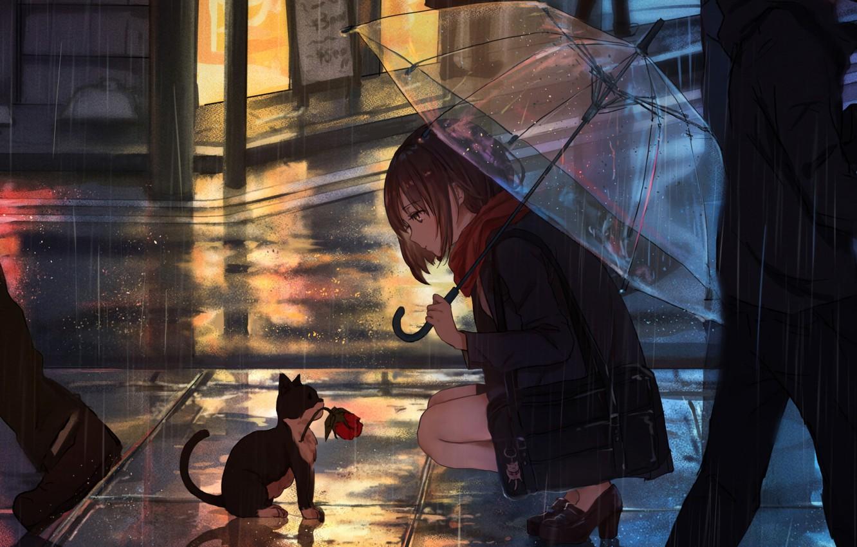 Wallpaper Girl, Anime, Flower, Rain, Umbrella, Cat images for