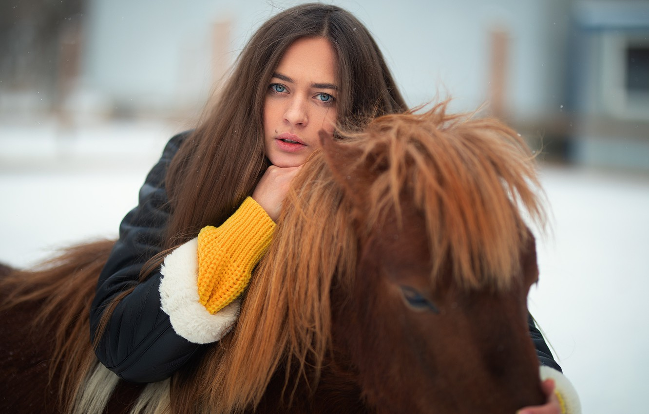 Photo wallpaper look, girl, face, pony, long hair, horse, Dmitry Shulgin