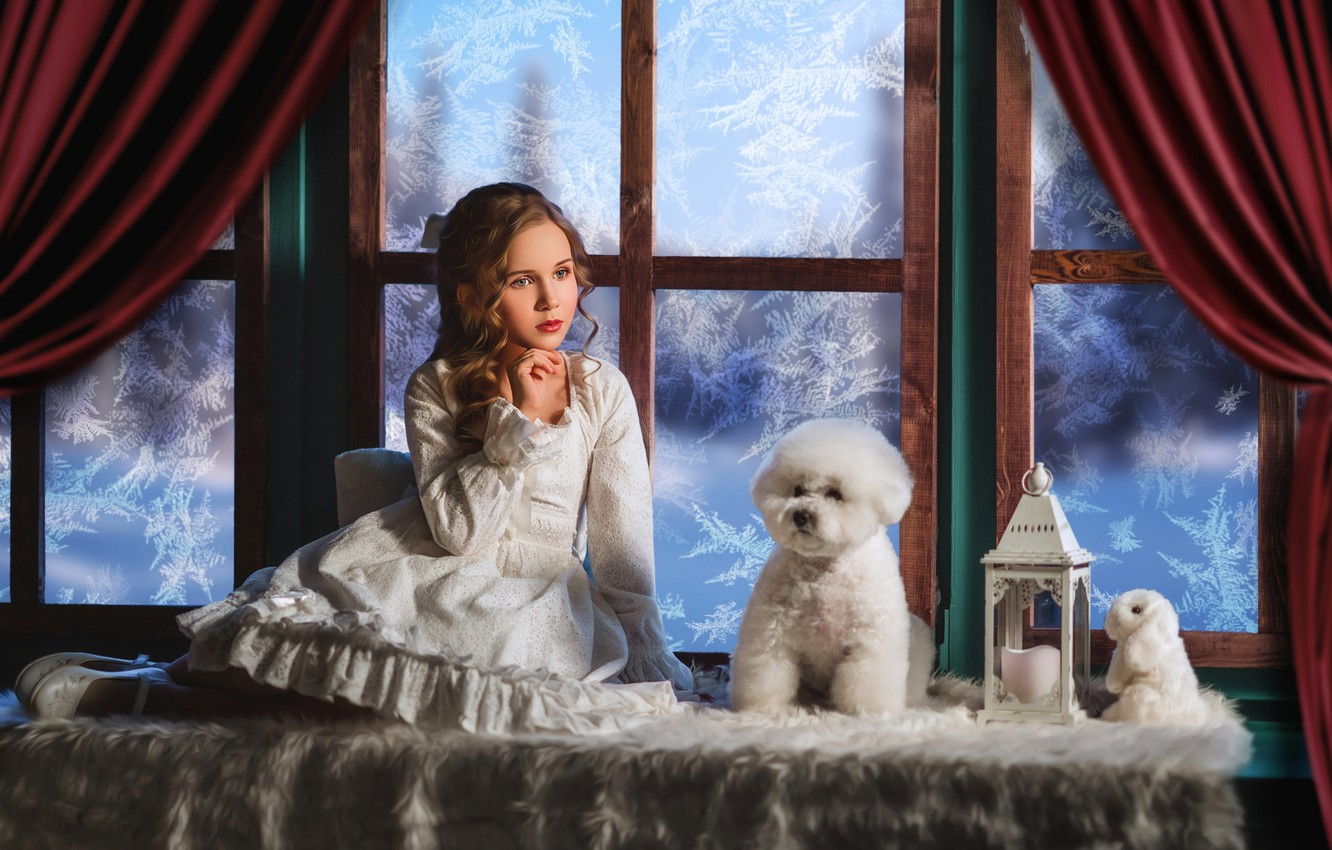 Photo wallpaper toy, dog, rabbit, dress, window, frost, girl, lantern, Bunny, poodle, curls, doggie, on the windowsill, …