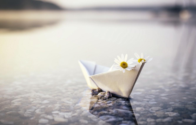 Photo wallpaper river, chamomile, boat