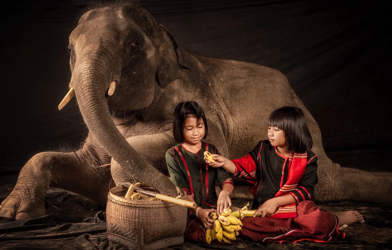 Photo wallpaper girls, elephant, the situation, bananas
