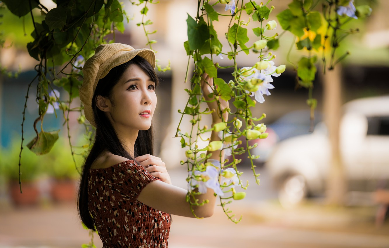 Photo wallpaper girl, branches, cap, Asian