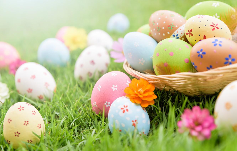 Wallpaper grass, flowers, eggs, Easter, spring, Easter, eggs, decoration,  pastel colors images for desktop, section праздники - download