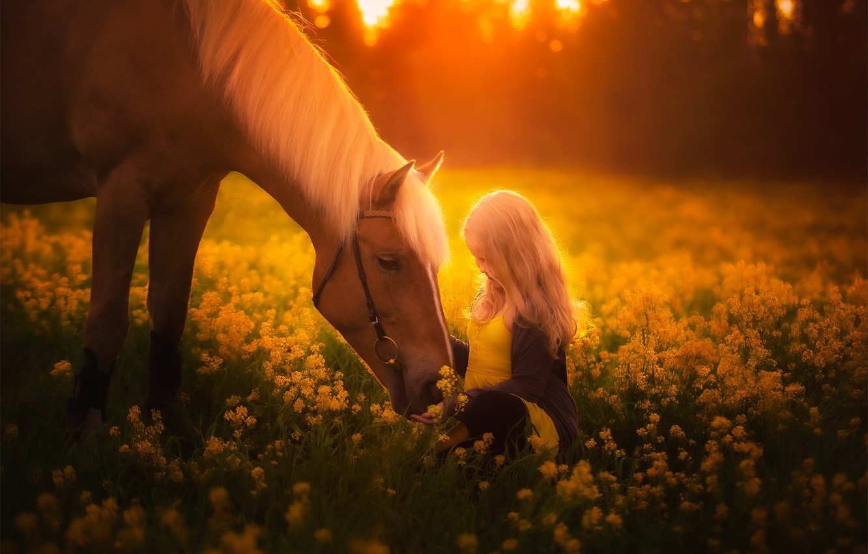 Photo wallpaper summer, horse, girl