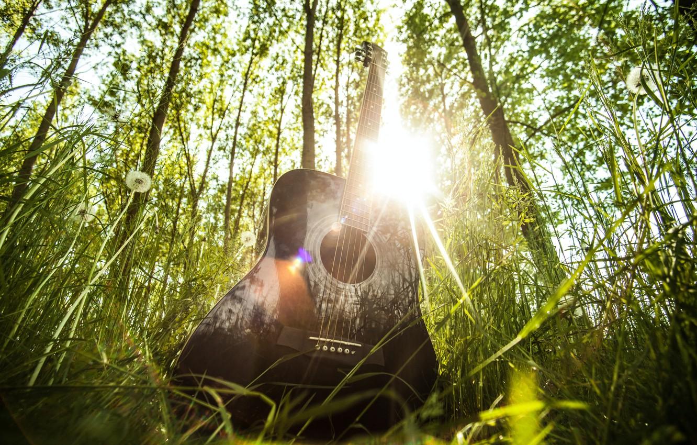 Photo wallpaper forest, summer, grass, the sun, rays, light, music, mood, glade, guitar, musical instrument