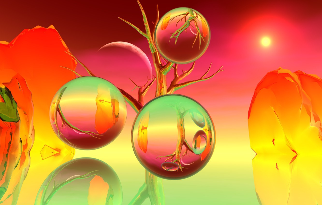 Photo wallpaper branches, reflection, background, balls