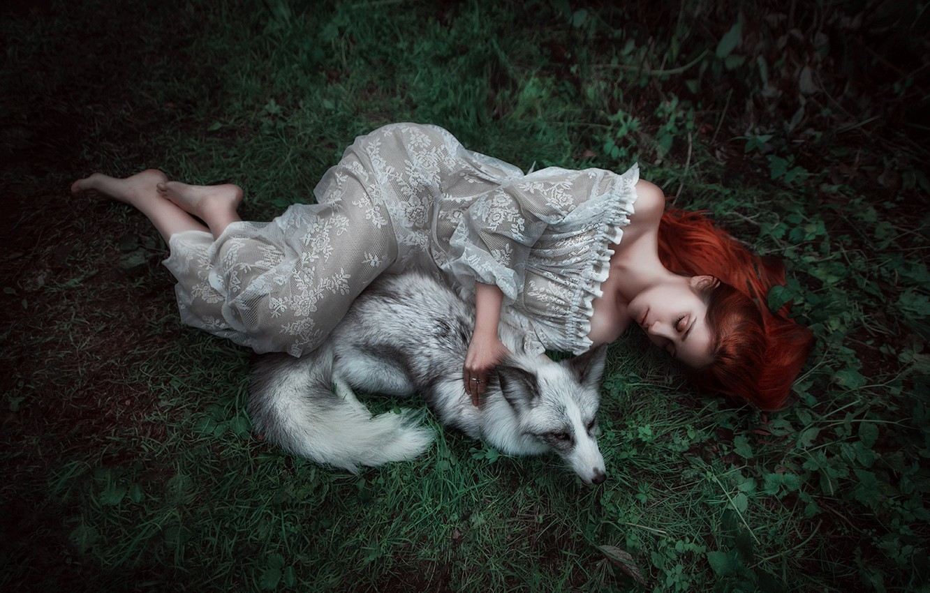 Photo wallpaper summer, grass, leaves, girl, nature, pose, grey, animal, white, feet, glade, sleep, the situation, tale, …