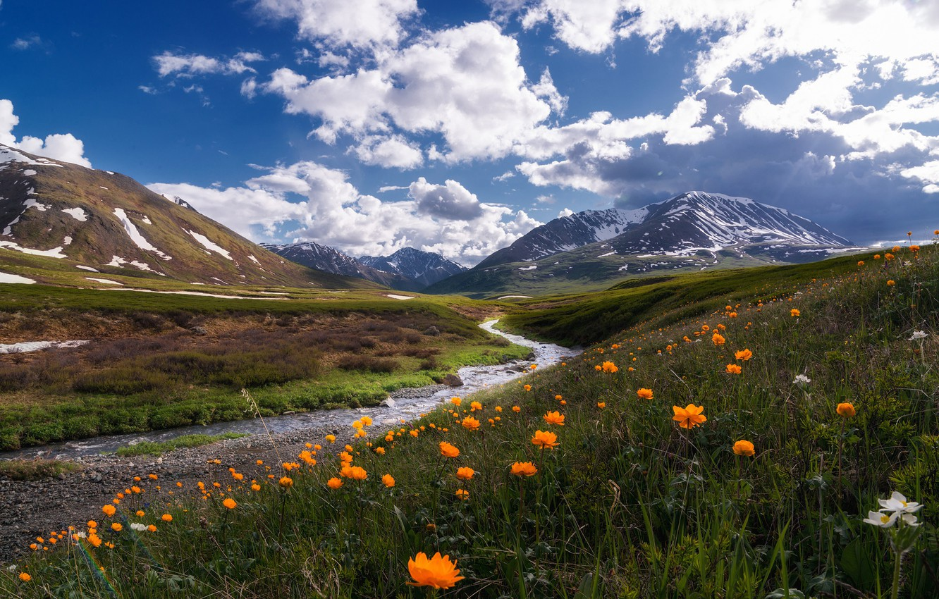 Photo wallpaper the sky, clouds, flowers, mountains, blue, stream, hills, Russia, pond, Altay, frying, globeflowers