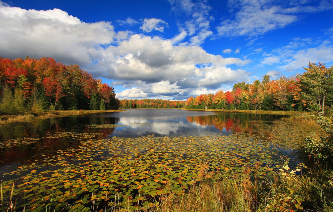Photo wallpaper autumn, forest, clouds, lake, photo