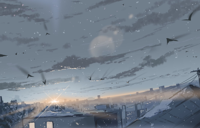 Photo wallpaper winter, the sky, snow, birds, the city