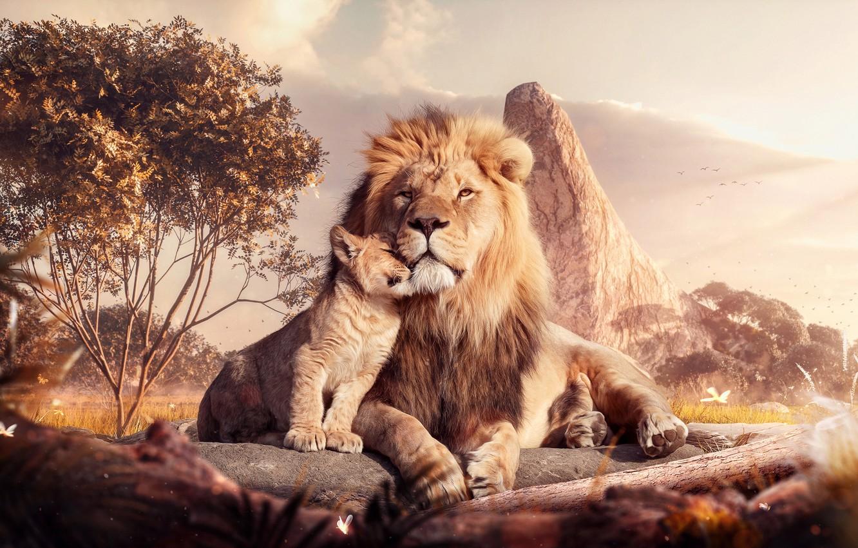 Wallpaper Cat Style Leo Africa Predator Lion Art Art