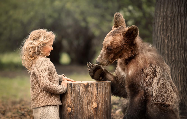 Photo wallpaper nature, animal, stump, predator, bear, girl, curls, child, curls, Marianne Smolin
