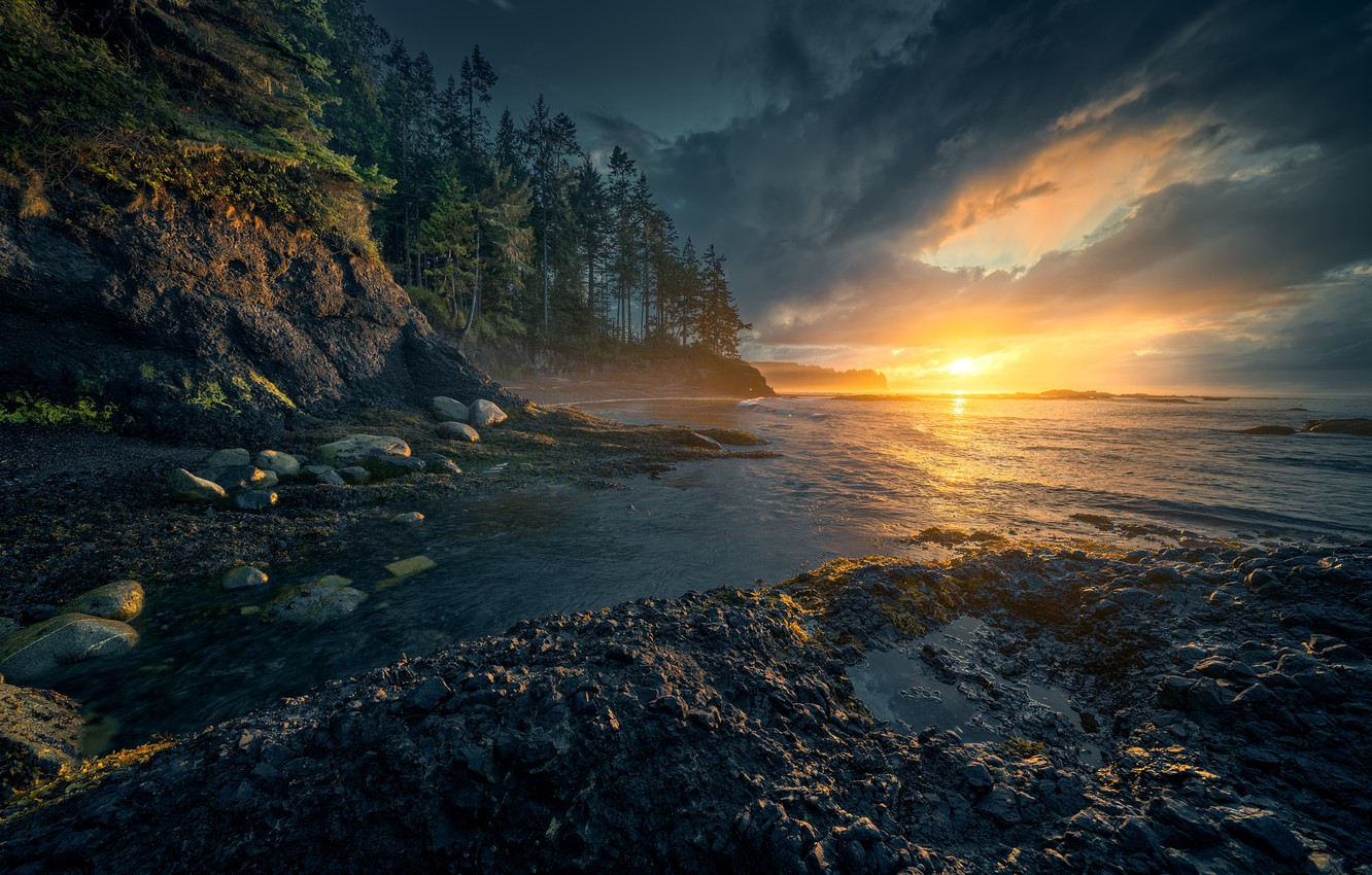 Photo wallpaper forest, the sky, water, sunset, nature, beauty, the evening, Christian S