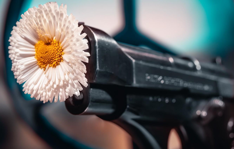 Photo wallpaper flower, gun, background