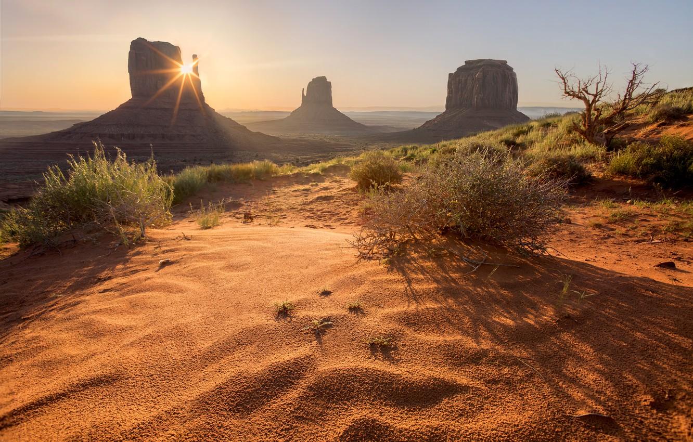 Photo wallpaper sand, the sun, vegetation, desert, USA, Monument valley