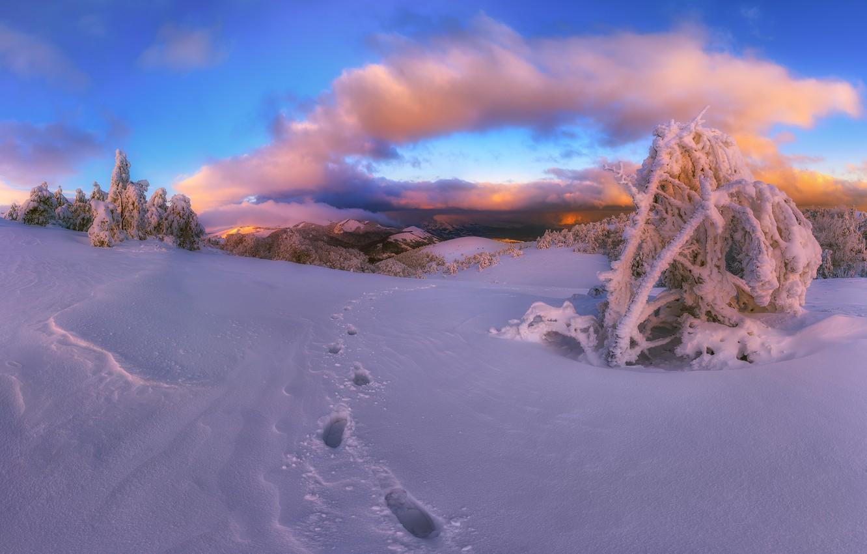 Photo wallpaper winter, snow, landscape, mountains, traces, nature, Crimea, Demerdzhi, Konstantin Voronov