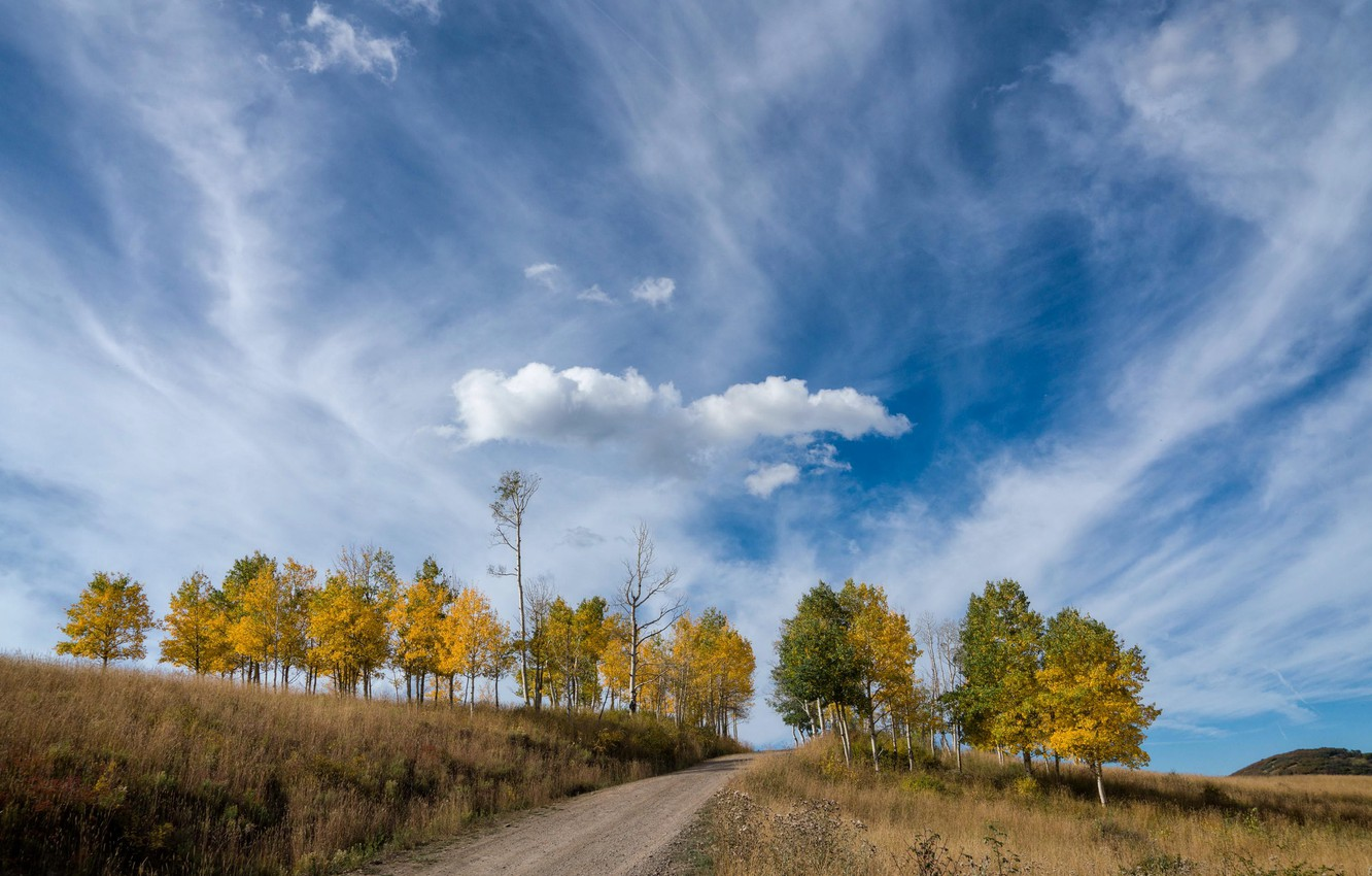 Photo wallpaper road, autumn, the sky