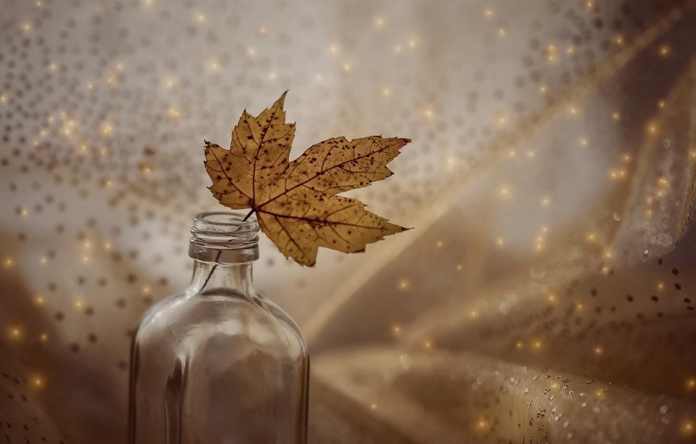 Photo wallpaper sheet, background, bottle