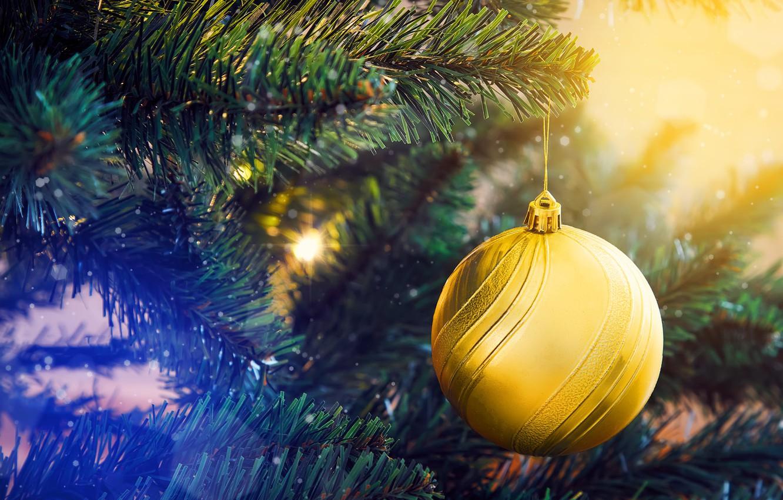 Photo wallpaper holiday, toy, ball, ball, Christmas, New year, needles, Christmas decorations