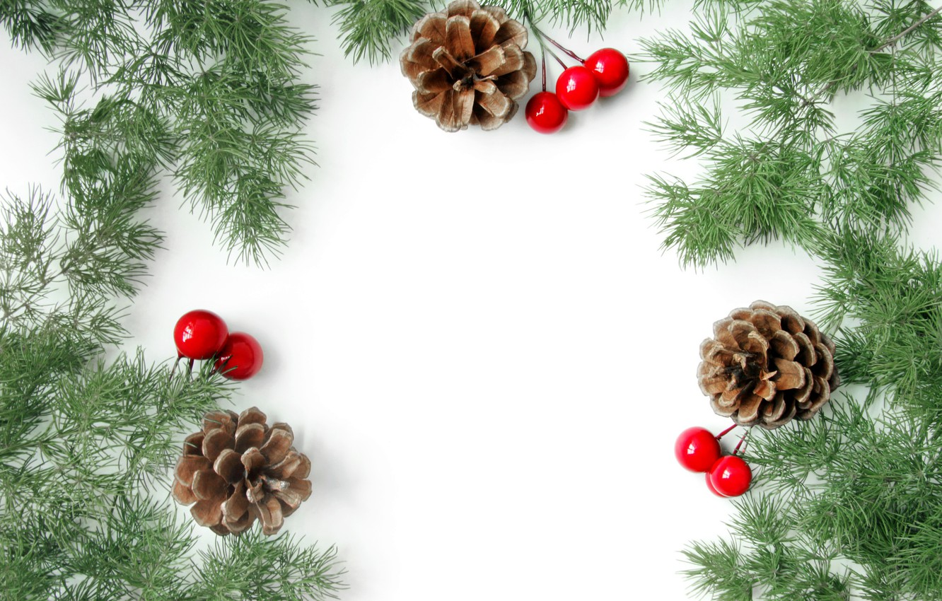 Photo wallpaper branches, berries, Christmas, New year, needles, postcard, blank