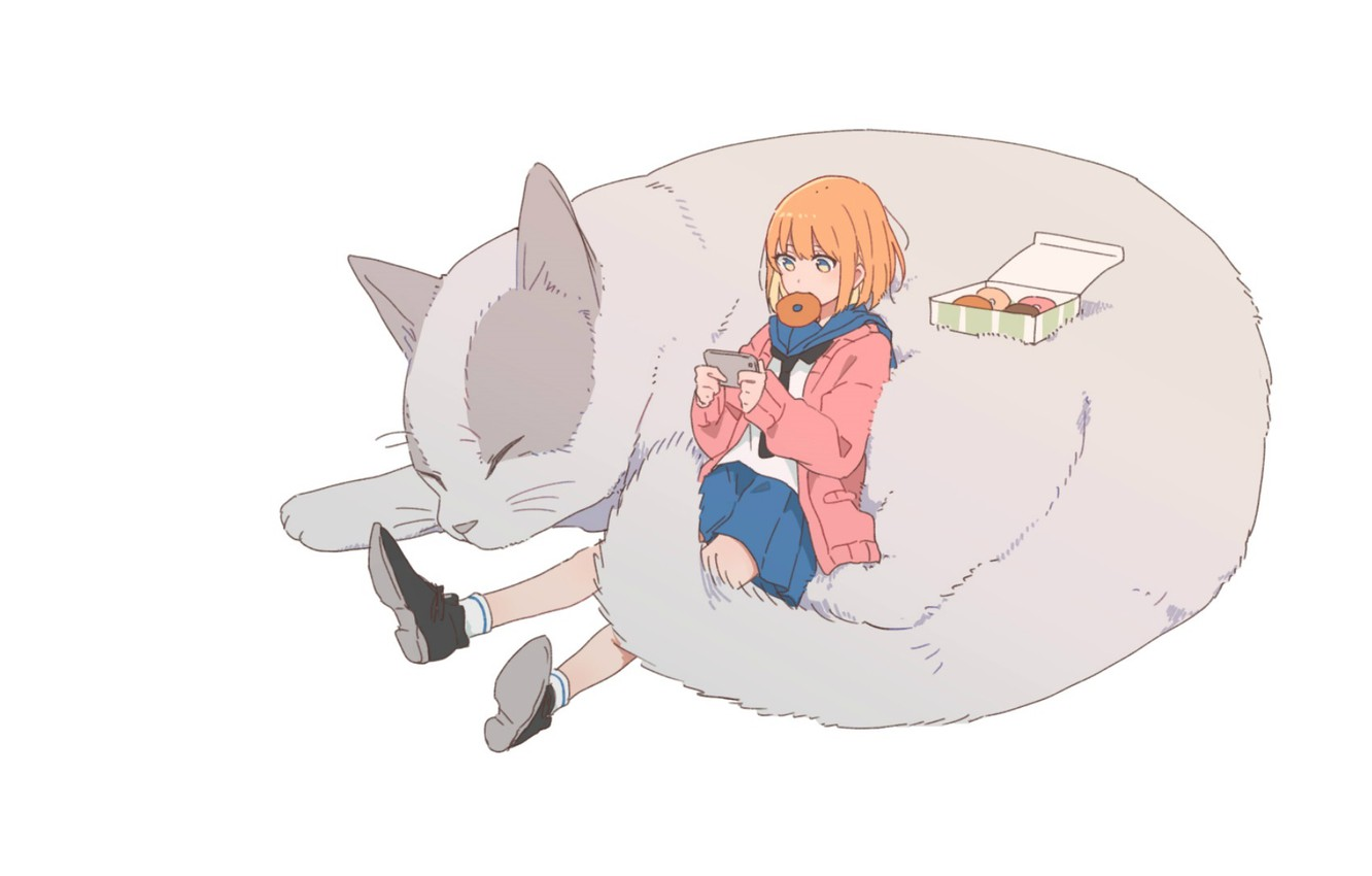 Photo wallpaper dreams, sleep, shoes, phone, red, donuts, schoolgirl, friends, resting, sailor, grey cat