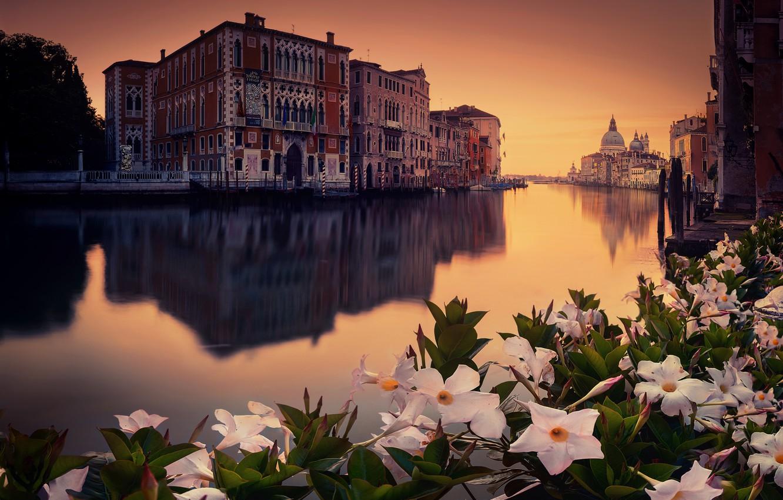 Photo wallpaper flowers, the city, venecia