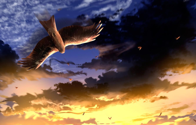 Photo wallpaper the sky, sunset, bird