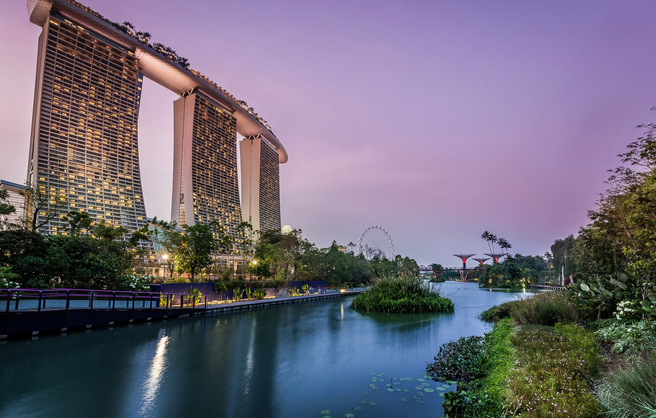 Photo wallpaper trees, lights, pond, Park, the evening, lights, Singapore, skyscrapers, the bushes, gardens, Gardens by the ...