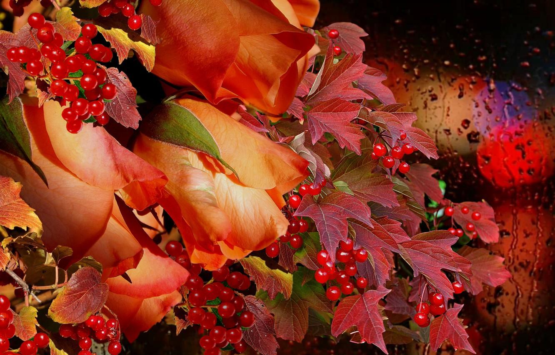 Photo wallpaper autumn, rain, bouquet, Roses, Kalina