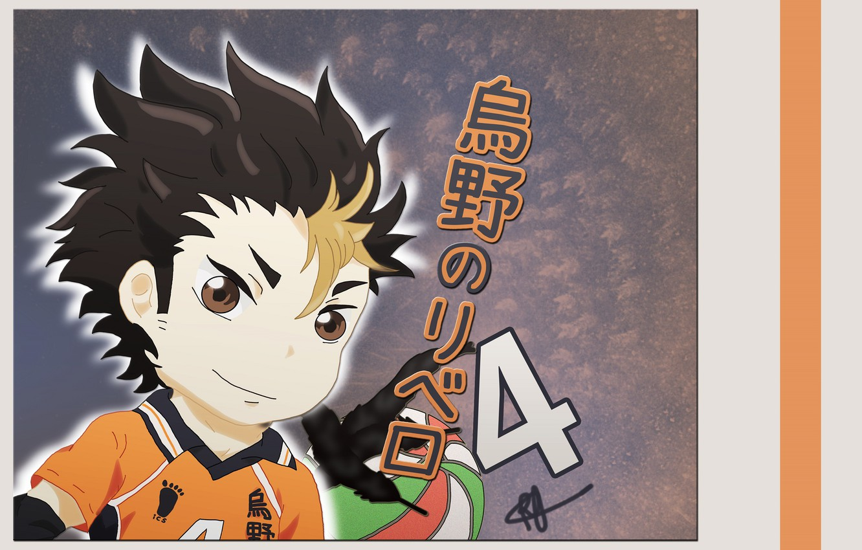 Photo wallpaper boy, art, Volleyball, Haikyuu!!