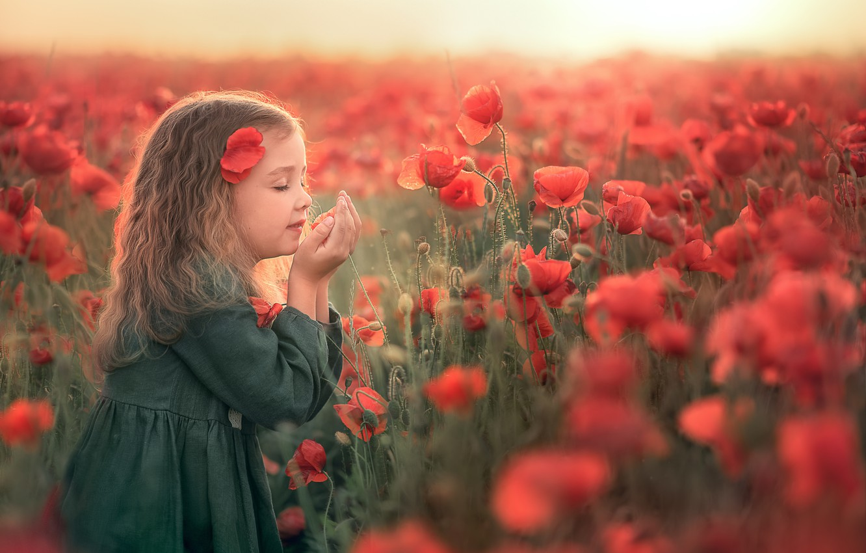 Photo wallpaper field, summer, sunset, flowers, nature, Maki, girl, child, Козел Марта