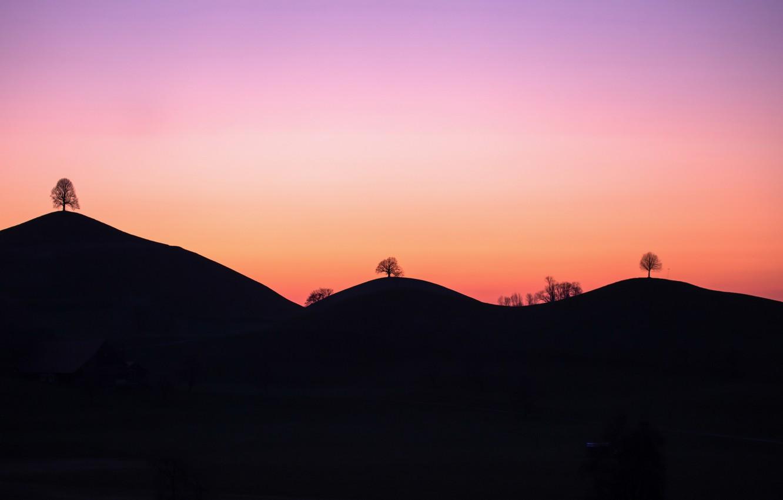 Photo wallpaper trees, sunset, mountains