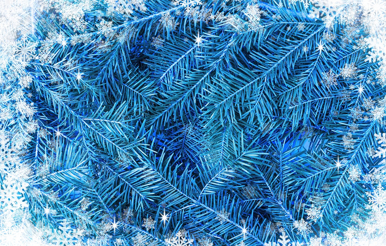 Photo wallpaper snowflakes, background, white, blue, winter, background, snow, snowflakes, frame, frost, fir tree, blue spruce, fir-tree …